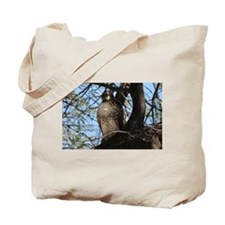 Red-tailed Hawk Staring Tote Bag