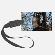 Red-tailed Hawk Staring Luggage Tag