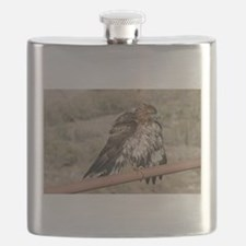 Red-Tailed Hawk Ruffling Feathers Flask