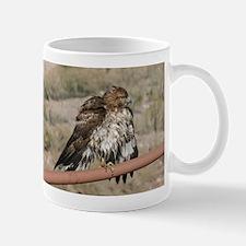 Red-Tailed Hawk Ruffling Feathers Mugs