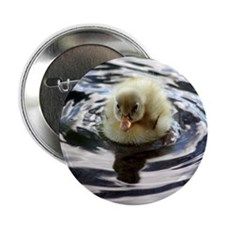 """Fuzzy yellow duckling 2.25"""" Button"""