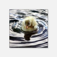 "Fuzzy yellow duckling Square Sticker 3"" x 3"""