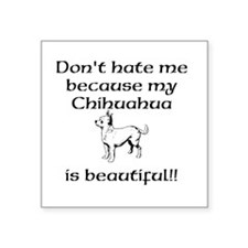 Dont hate...Chihuahua Sticker