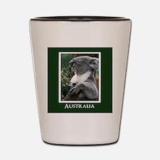 Koala Bear Australian Souvenir Shot Glass
