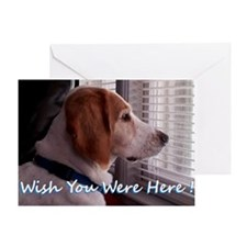 Wish You Were Here Greeting Cards