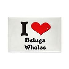 I love beluga whales Rectangle Magnet