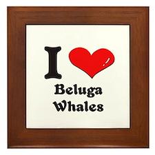 I love beluga whales  Framed Tile