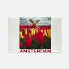 Amsterdam Tulips Rectangle Magnet
