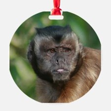Grouchy Monkey Photo Ornament