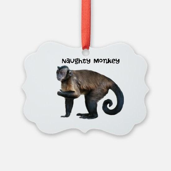 Personalizable Monkey Photo Ornament