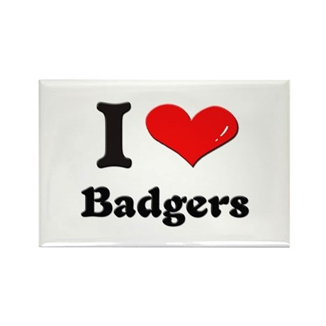 I love badgers Rectangle Magnet