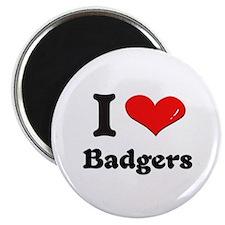 I love badgers Magnet