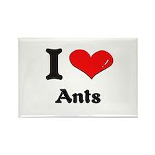 I love ants Rectangle Magnet