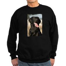 flat coated retriever Sweatshirt