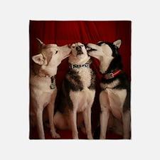 Kissing Huskies Throw Blanket
