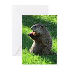Groundhog Greeting Cards