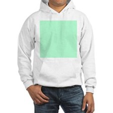 Mint Green solid color Jumper Hoody