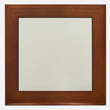 Light Gray solid color Framed Tile