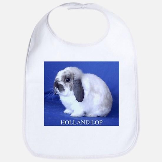 Holland Lop Rabbit.jpg Bib