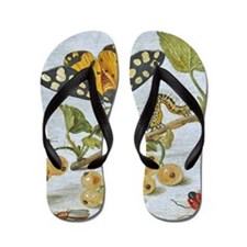 Insects Crawling Flip Flops