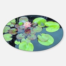 Lily Pads with Frog Sticker (Oval)