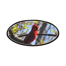 Male Cardinal Patches