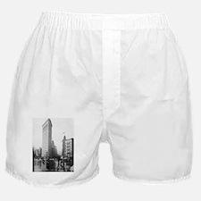 Flat Iron Building Boxer Shorts