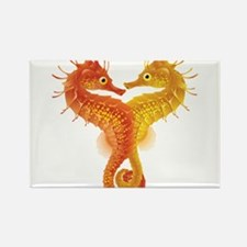 Seahorse Dance Magnets
