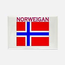 Norweigan Flag Rectangle Magnet