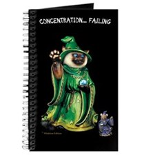 """Cat and Mouse Wizards """"Concentration"""" Journal"""