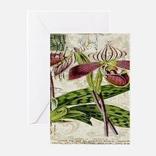 orchid french botanical art paris fashion Greeting