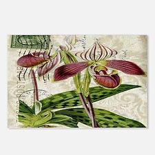 orchid french botanical art paris fashion Postcard
