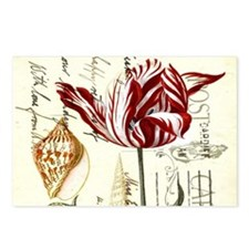 orchid french botanical art paris fashion Postcard