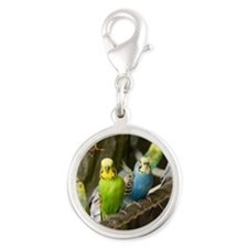 Budgie Silver Round Charm