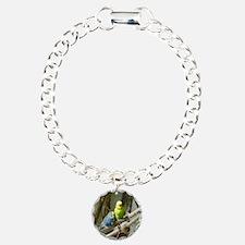Budgie Bracelet