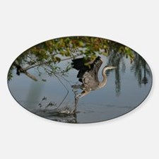 Great Blue Heron Takes Flight Decal