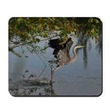 Great Blue Heron Takes Flight Mousepad