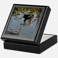 Great Blue Heron Takes Flight Keepsake Box
