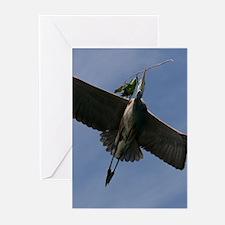 Great Blue Heron In Flight Greeting Cards