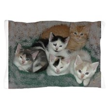 Lots of Kittens Pillow Case