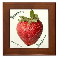 Strawberry Squared Framed Tile