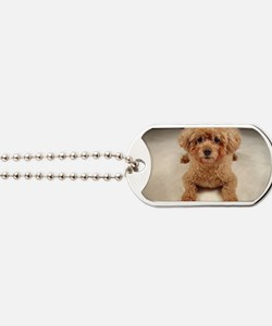 Happiness Five-leaf Flower  Dog Tags