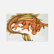 Orange Dragon Magnets