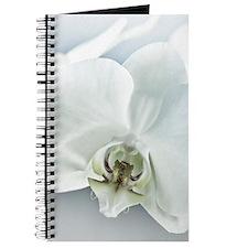White Orchid Flower Journal