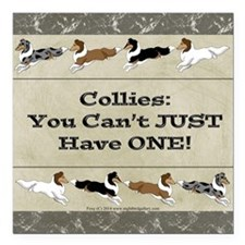 "Collie Chips Square Car Magnet 3"" x 3"""