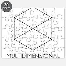 mutlidimensional Puzzle