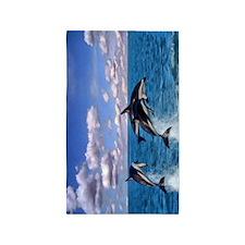 Dusky Dolphins 3'x5' Area Rug
