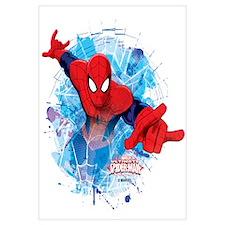 Spiderman Web Wall Art