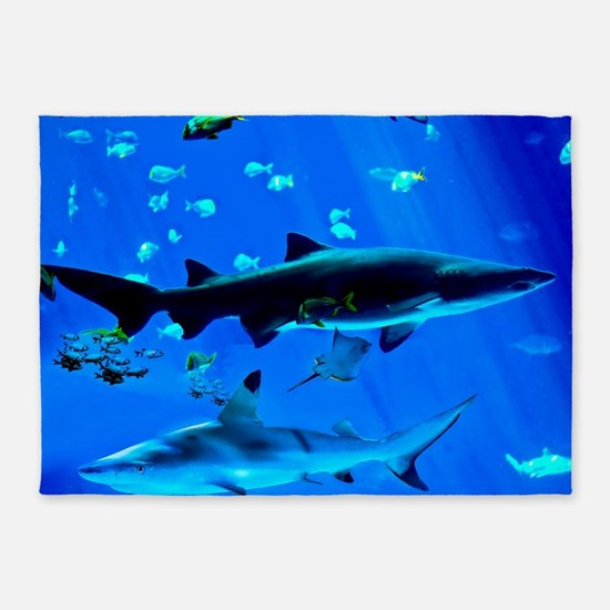 2 Black Tipped Sharks 5'x7'Area Rug