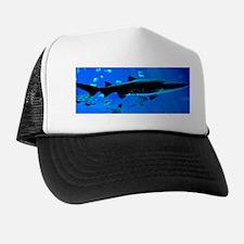 2 Black Tipped Sharks Trucker Hat